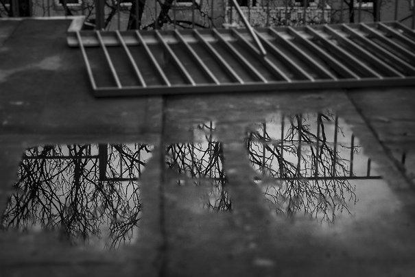 © Deborah Drexler